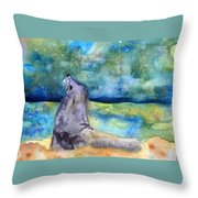 Basking In The Moonlight Throw Pillow