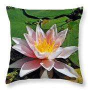 Basking In The Sunshine Throw Pillow