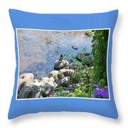 Basking On A Rock Throw Pillow