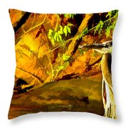 Basking Sunset Throw Pillow