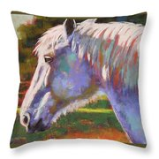 Basquing In The Sun Throw Pillow