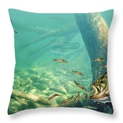 Bass Lake Throw Pillow