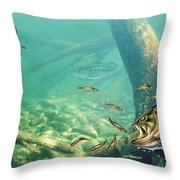 Bass Pond Throw Pillow