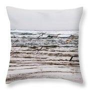 Bastendorff Beach Throw Pillow