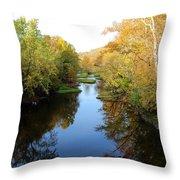 Batavia, Ohio Creek - Other Side Vertical Throw Pillow