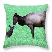 Elk's Bath Time Throw Pillow