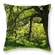 Bathed In Spring Throw Pillow