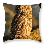 Bathed In Sunset Throw Pillow