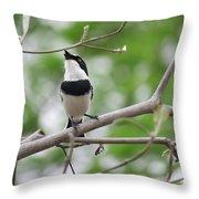 Batis Bird Throw Pillow