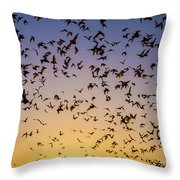 Bats At Bracken Cave Throw Pillow