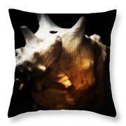 Battered Conch  Throw Pillow
