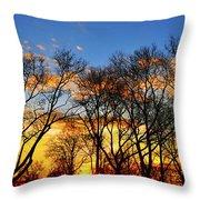 Battery Park Sunset Throw Pillow