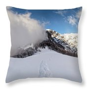 Battle Of Earth And Sky Throw Pillow