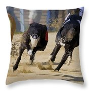 Battle Of The Racing Greyhounds At The Track Throw Pillow