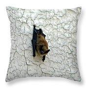 Batty Grin Throw Pillow