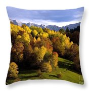 Bavarian Alps 2 Throw Pillow