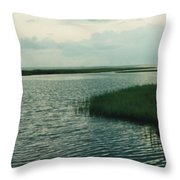 Bay And Marsh 1 Throw Pillow