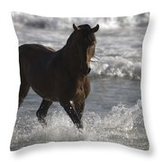 Bay Andalusian Stallion In The Surf Throw Pillow