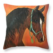 Bay Arabian Throw Pillow