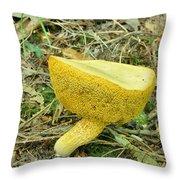 Bay Bolete Fungus Throw Pillow