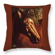 Bay Horse Art Horse Portrait Circe At Sunset Throw Pillow