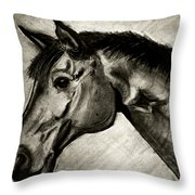 My Friend The Bay Horse Throw Pillow