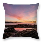 Bay Of Fundy Throw Pillow