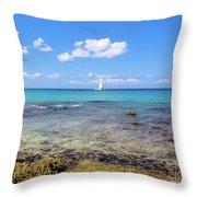 Bayahibe Coral Reef Throw Pillow