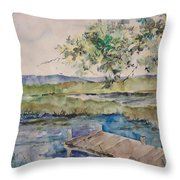 Bayou At Carr Drive  Throw Pillow