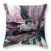 Cypress At Rest Throw Pillow