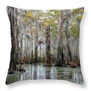 Bayou Magic Throw Pillow