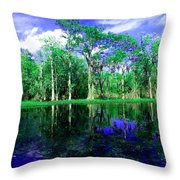 Bayou Reflections Throw Pillow