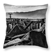Bayside Wings Throw Pillow