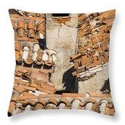 Bazaar View Throw Pillow
