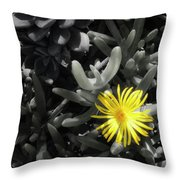 Be Different Throw Pillow by Lynn Geoffroy