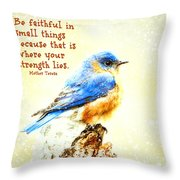 Be Faithful In Small Things Throw Pillow