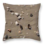 Beach 1121 Throw Pillow