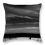 Beach Blimp Throw Pillow