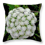 Beach Bloom Throw Pillow