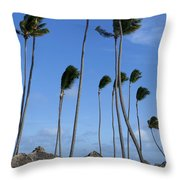 Beach Cabanas And Palm Trees Throw Pillow