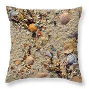 Beach Deposit Throw Pillow