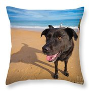 Beach Dog Throw Pillow