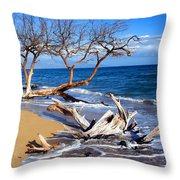 Beach Driftwood Fine Art Photography Throw Pillow