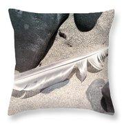 Beach Feather Throw Pillow