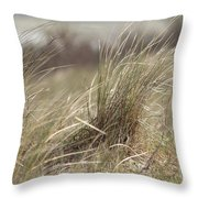 Beach Gras Throw Pillow