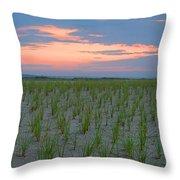 Beach Grass Farm Throw Pillow