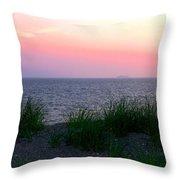 Beach Grass On Long Island Sound Throw Pillow