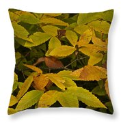 Beach Leaves Throw Pillow