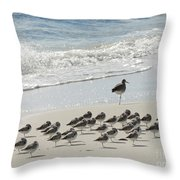 Beach Mantra Throw Pillow