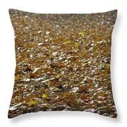 Beach Of Autumn Leaves Throw Pillow